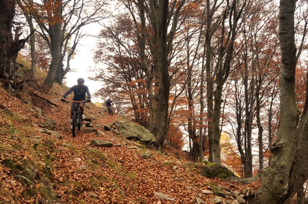 Flowige Trails in herbstlicher Stimmung begleiten uns bis zur Alpe Nisciora.